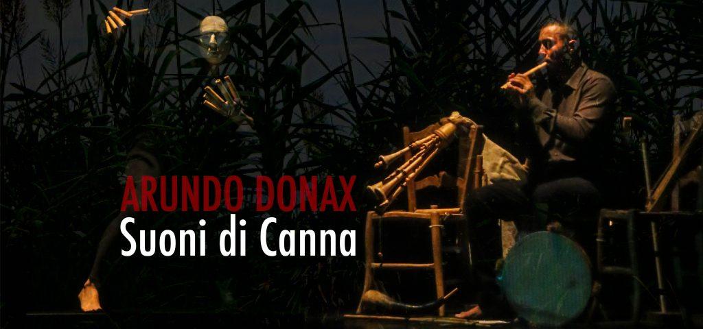ARUNDO DONAX