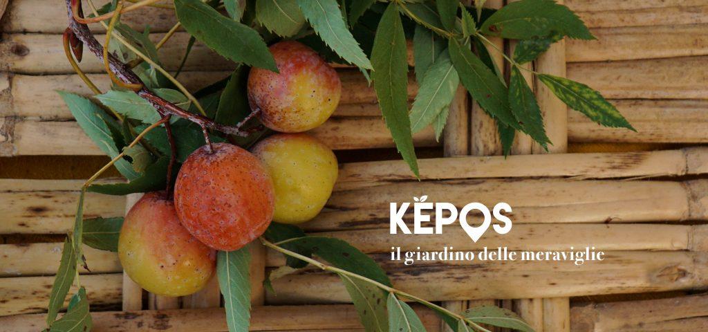 KEPOS